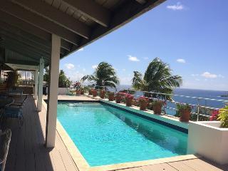 Great View - STT - Saint Thomas vacation rentals