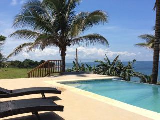 La Casa de la Dolce Vita - Pedasi vacation rentals