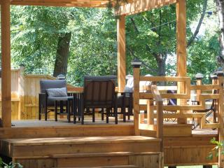 Home with Deck,near downtown, market, bike paths - Ottawa vacation rentals
