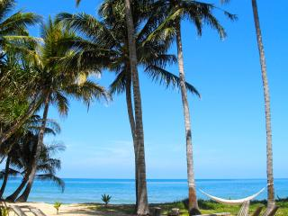 OAK BEACH COTTAGE:  LUXURIOUS TROPICAL BEACHFRONT - Port Douglas vacation rentals