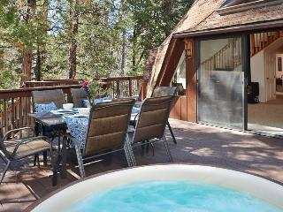 The Dome II with Spa in Beautiful Idyllwild - Idyllwild vacation rentals