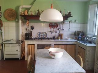 Massarosa: Villa Ottecentesca - Massarosa vacation rentals