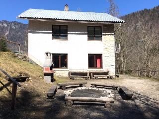 Cottage Radovna - Zgornje Gorje vacation rentals