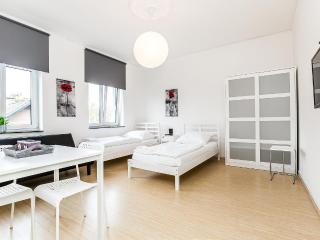13 Cozy apartment in Cologne 3 beds - North Rhine-Westphalia vacation rentals