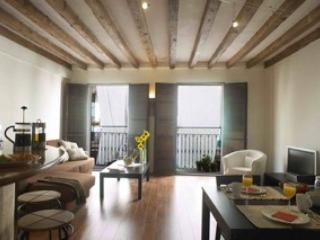 Class A+ loft, plaza Cort, lovely!! - Palma de Mallorca vacation rentals