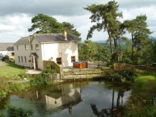 CWM HOWELL FARMHOUSE -WEST WALES - PRIVATE HOT TUB - Nantgaredig vacation rentals