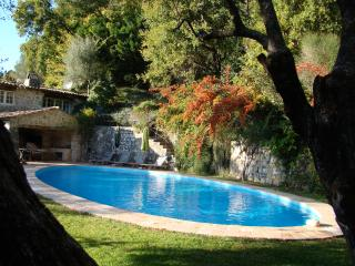 Dallas designed home with views of Gorges du Loup - Alpes Maritimes vacation rentals