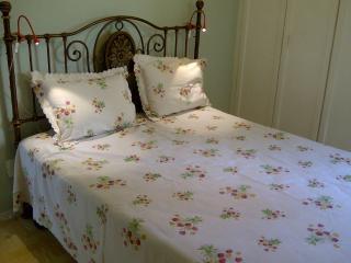 Beautiful 2 bedroom apartment in Laranjeiras - Rio de Janeiro vacation rentals