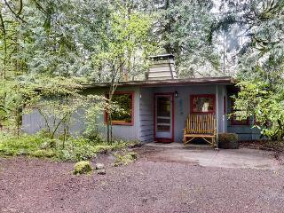 Pet-friendly with private hot tub, riverfront, room for nine - Rhododendron vacation rentals