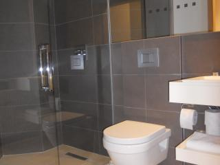 Apartment with 2 rooms and 2 bathrooms 120USD/day - Reykjavik vacation rentals