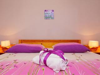 Viola Apartment on Island Korčula offers an Authentic Dalmatian Experience - Zrnovo vacation rentals