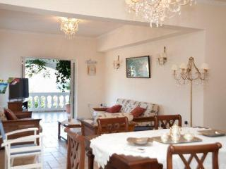 Eleni and Kostis villa - Mirtos vacation rentals