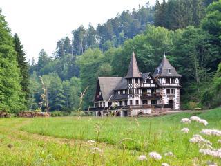 Le saint moulin de la Petite Pierre - La Petite Pierre vacation rentals