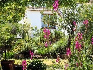 MONTPELLIER, studio dans un jardin méditerranéen - Montpellier vacation rentals