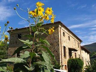 Agriturismo Al Palazzaccio - Calci vacation rentals