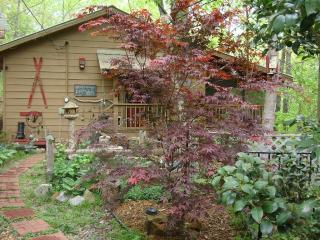 Coolest Cabin Ever!! Claw Foot Tub. Yoga Studio. - Blue Ridge vacation rentals