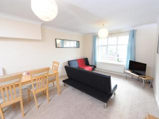 2 Bed Budget Apt Nr City Sleeps 6 (l) - Manchester vacation rentals