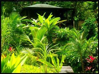 Liberty Jungle... One Love Studio - Saint Joseph Parish vacation rentals