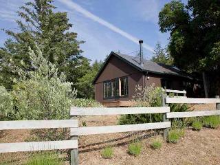 Woodhaven Cottage at Ravenridge - Yorkville vacation rentals