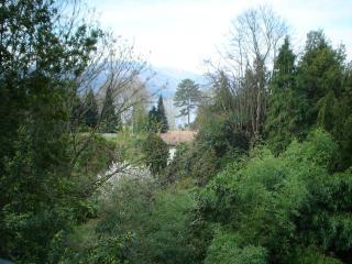 appartamento lago maggiore - Laveno-Mombello vacation rentals