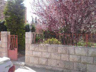 2/3  bedroom garden apt within a villa - Amman vacation rentals