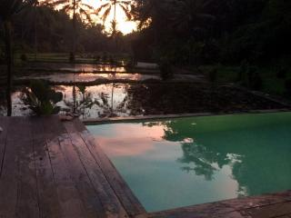 STAIRWAY TO HEAVEN RETREAT IN A VALLEY, Ubud area! - Peliatan vacation rentals