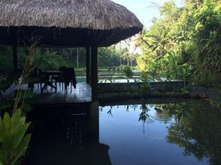 Unique aquatic environment villa, Ubud area! - Tavira vacation rentals