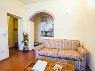Apt nr 1 in Chianti with  pool between Siena & Flo - Certaldo vacation rentals