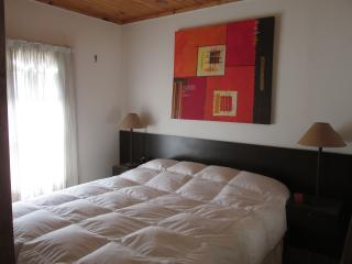 MENDOZA. CAPITAL WORLD OF WINE. VACATION RENTAL - Chacras de Coria vacation rentals