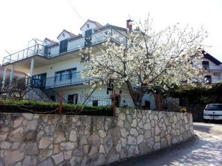 Apartments Tamara Ap2 - Island Ciovo vacation rentals