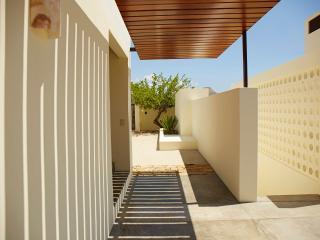 Casa Martinez - San Jose Del Cabo vacation rentals