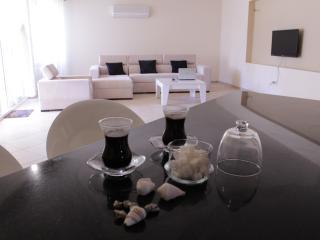Bright and spacious 3 bedroom apartment - Erdemli vacation rentals