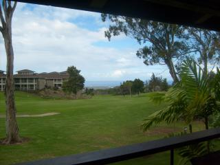 Recently upgraded 3 bedroom with Ocean View! - Waikoloa vacation rentals