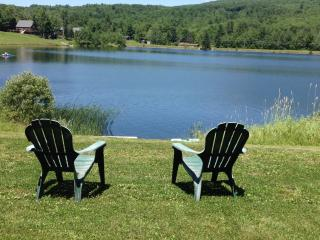 LAKEVIEW CHALET CLOSE TO HUNTER MTN. - Preston Hollow vacation rentals
