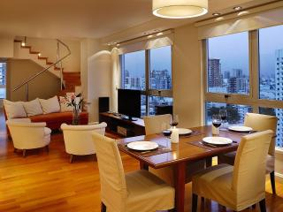 AMAZING 3 BEDROOM APT IN PALERMO (PH3) - Buenos Aires vacation rentals