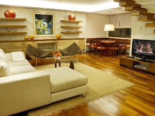 GREAT 2 BEDROOM-DUPLEX (R9) - Buenos Aires vacation rentals