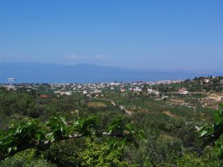 Villa Regina - Aegina Town vacation rentals