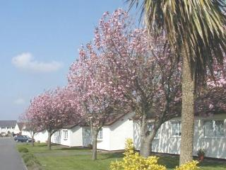 No 1 The Bungalow - by Gower's best beaches - Swansea vacation rentals