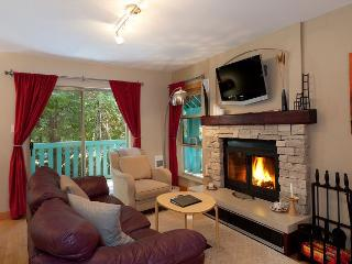 Fireplace, Situated On Free Village Shuttle Route, Private Garage, BBQ - Whistler vacation rentals
