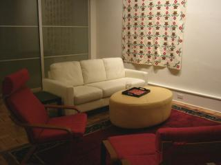 Manhattan Holiday Family Loft Apt/Tribeca Accomodates 4-6 - New York City vacation rentals