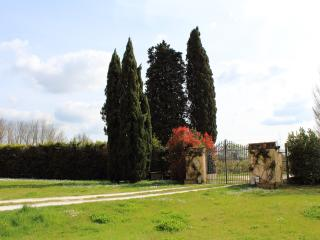 Casa Ornella with garden between Pisa and Florence - Buti vacation rentals
