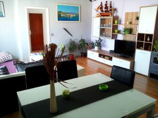 Apartments Tamara Ap3 - Slatine vacation rentals