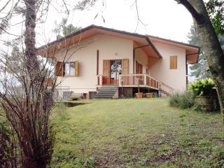 Villa Belvedere - Pietrasanta vacation rentals