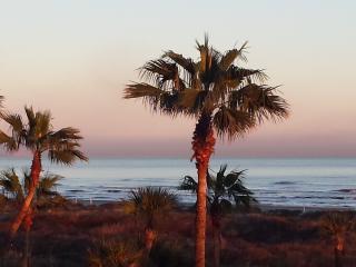 Oceanfront 1BR condo at Galvestonian on East Beach - Galveston vacation rentals