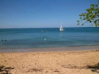 NEAT HOUSE FOR RENT NEAR BEAUTIFUL BEACHES - Rincon vacation rentals