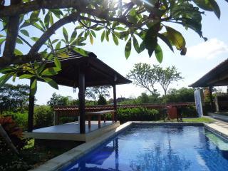 Spacious 2 BR Villa in Canggu with ricepaddy-view - Canggu vacation rentals