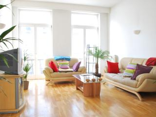 Very Central Apartment in Brussels - Brussels vacation rentals