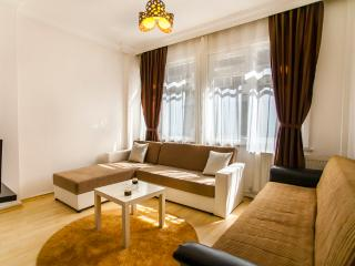 112- Comfortable 2 bedroom flat! - Istanbul Province vacation rentals