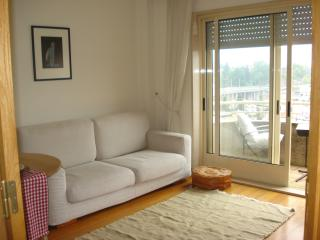 Apt. with stunning view over the river Dour - Vila Nova de Gaia vacation rentals