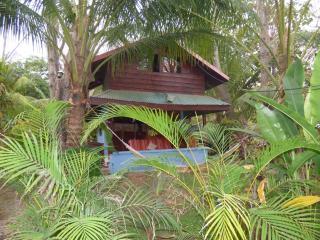 sofia's cabina   a few steps from the beach - Santa Teresa vacation rentals